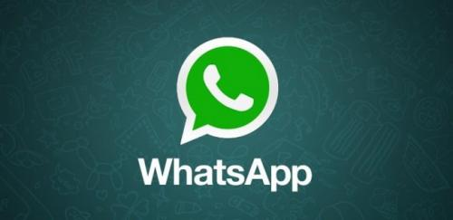 endomarketing via whatsapp